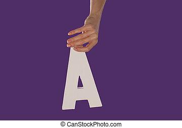 litera, górny do góry, ręka, samica, dzierżawa