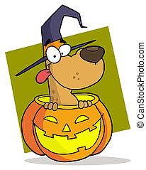 litera, halloween, rysunek, pies