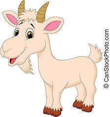 litera, rysunek, goat