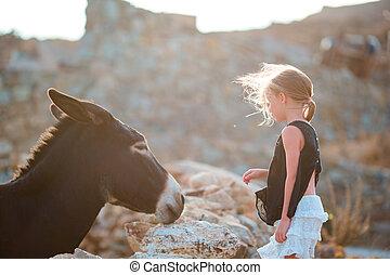 litet, förtjusande, flicka, med, vild, åsna, på, grekisk ö, utomhus