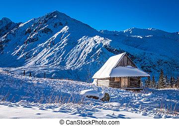 litet hus, höjande, med, snö, i fjällen