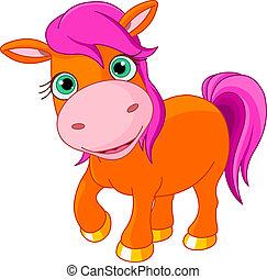 litet, ponny, söt