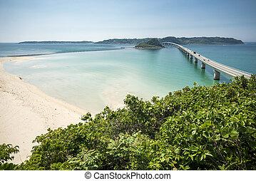 litoral, floresta verde, e, ponte