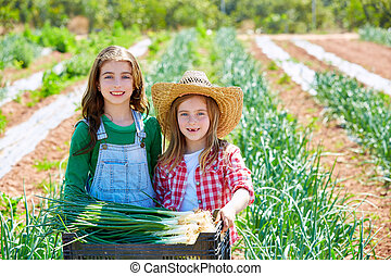 Litte kid farmer girls in onion harvest orchard - Litte kid...