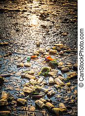 litter beach