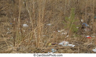 Litter in spring forest area