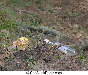 Litter near ant nest in forest. Environmental pollution.