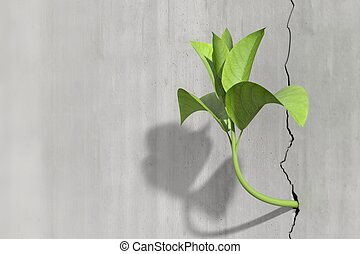 Survival and growth concept of a little 3d render of a plant in a concrete wall