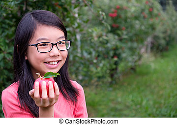 Little Asian girl child hold a red apple in orchard
