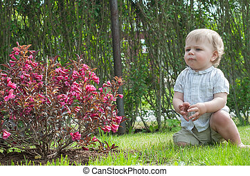 Little baby boy near pink bush
