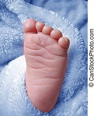 Little Baby Boys Foot - Little foot in Blue