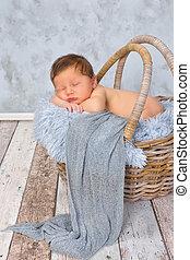 Little baby in basket