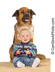 Little baby with trusted family dog - Happy smiling little...