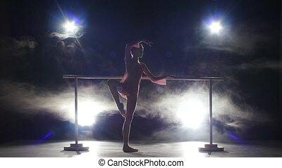 little ballerina dancer near the barre. smoke
