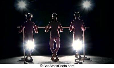 little ballet girls in tutu posing at ballet barre - Three...