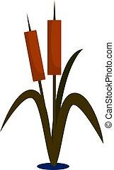 Little bamboo, illustration, vector on white background.