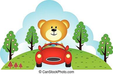 Little bear driving a car