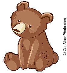 Little bear on white background