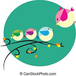 little bird family