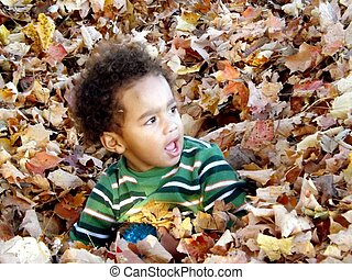 Little black boy playing in leaves