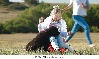 Girl Feeding Newfoundland Dogs - Little Blond Girl Feeding...