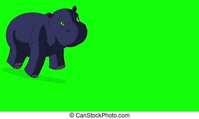 Little Blue Hippo Runs Front View.