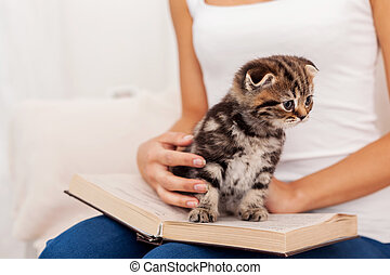 Little bookworm. Cute little kitten sitting on the open book while being stroked by woman