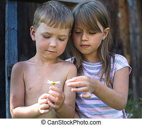 Little boy and girl with daisy near a country house.