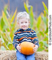 boy at pumpkin patch - little boy at pumpkin patch holding...