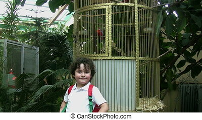 Little boy at the zoo