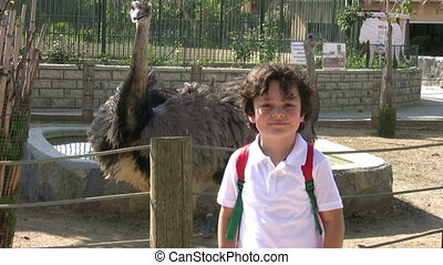 Little boy at the zoo with ostrich