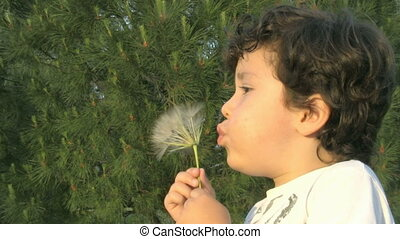 Little boy blowing a dandelion