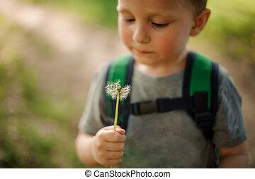 Little boy blowing a white dandelion in the garden