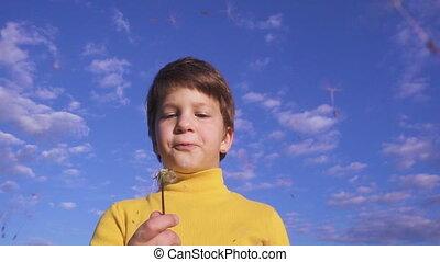 Little boy blowing up the dandelion seeds against blue sky,...