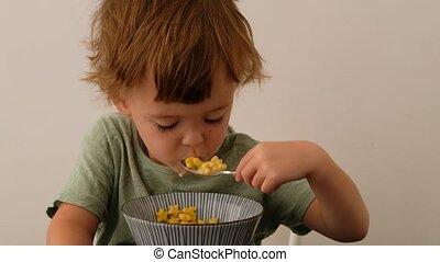 Little boy eating cereals for breakfast