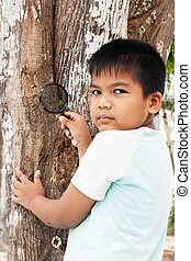 little boy exploring tree with a magnifying glass looking at leaves