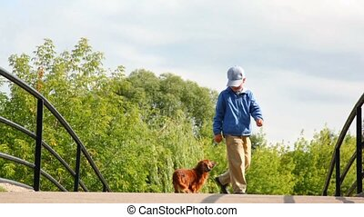little boy feeding dog in park