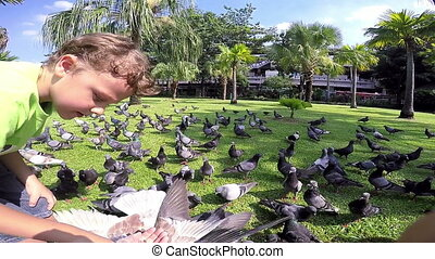 little boy feeding pigeons in the park at the day time