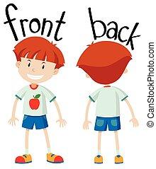 Little boy front and back illustration