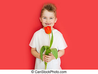 Little boy holding a flower tulip for mom. Mother's Day to celebrate. Red background.