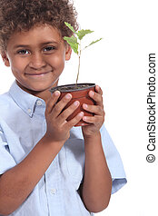 Little boy holding plant pot
