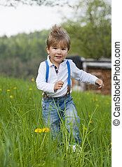 Little boy in a meadow