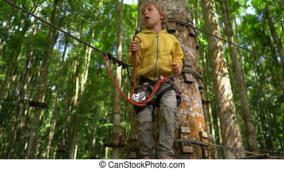 Little boy in a safety harness climbs on a route in a forest...