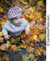 little boy in autumn