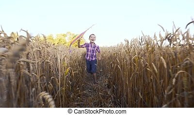 Little boy in blue shirt running with kite on the wheat field