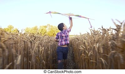 Little boy in a checkered shirt running with kite on the wheat field on summer day in the park