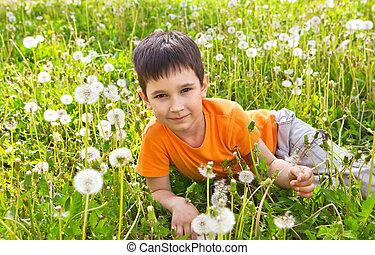 Little boy in dandelions