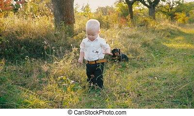 little boy in the nature - little boy walks on a dirt road