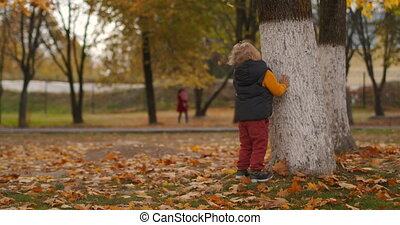 little boy is walking in park at autumn day, standing near old tree, picturesque nature with dry and yellowed grass and foliage, weekend walks of townspeople