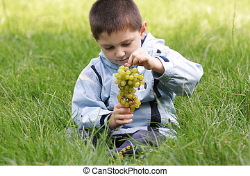 Little boy looking at bunch of grapes